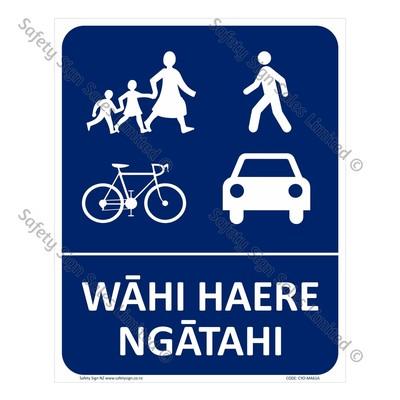 CYO|MA61A - Wāhi Haere Ngātahi